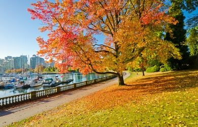 Cruise to Vancouver in Autumn