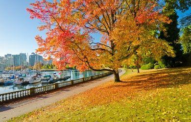 Hottest cruise destinations, Vancouver